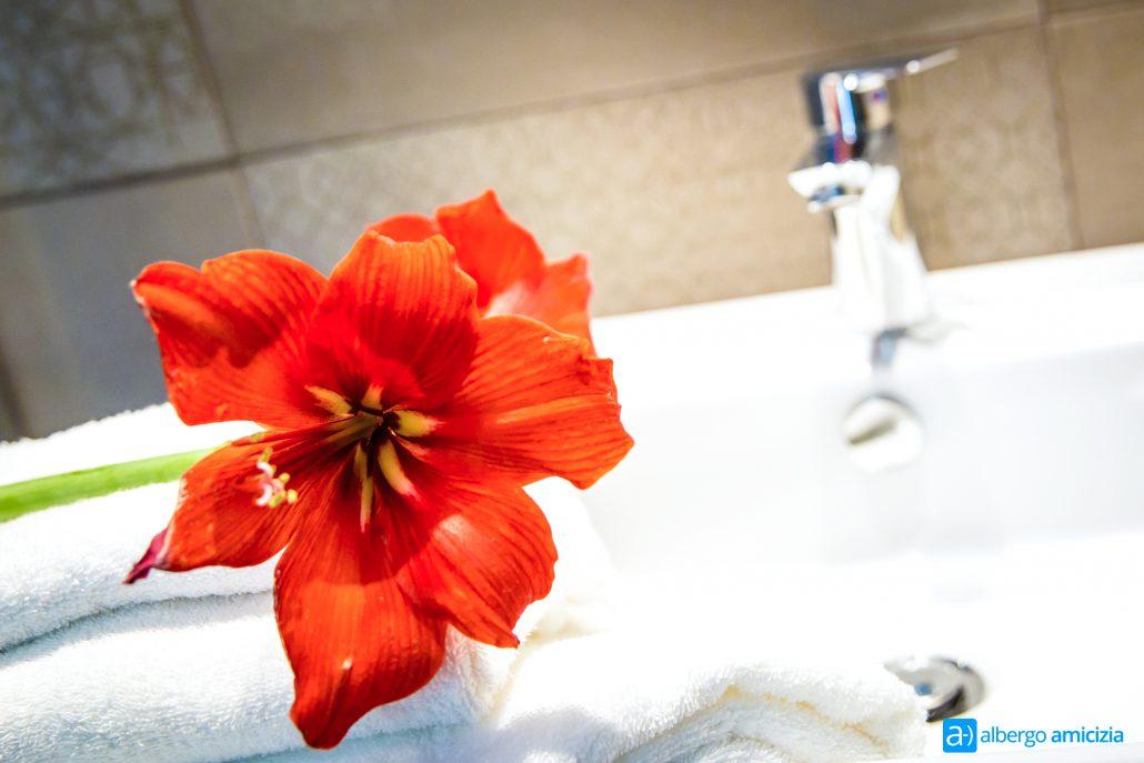 Foto del fiore